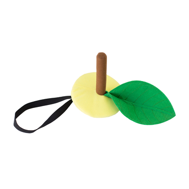 Lemon hat product listing flat lay
